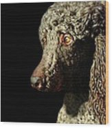 French Poodle Standard Wood Print by Diana Angstadt