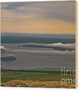 Frenchman Bay And The Porcupine Islands Wood Print