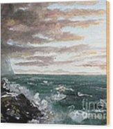 Frenchman's Bay Wood Print