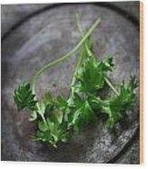 Fresh Celery Wood Print