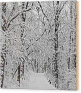 Fresh Fallen Snow Wood Print