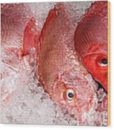 Fresh Fish 05 Wood Print