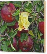 Fresh Fruit Wood Print