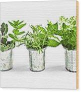 Fresh Herbs In Pots Wood Print by Elena Elisseeva