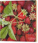 Fresh Picked Strawberries Wood Print