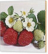 Gardenfresh Strawberries Wood Print