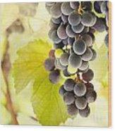 Fresh Ripe Grapes Wood Print by Mythja  Photography