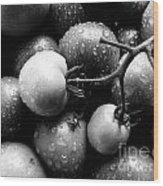 Fresh Ripening Tomatoes In Black And White. Wood Print