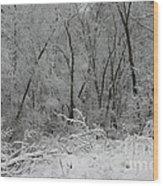 Fresh Snow At Roquin Wood Print