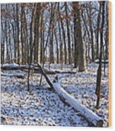 Fresh Snow In The Woods Wood Print