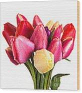 Fresh Spring Tulip Flowers Wood Print