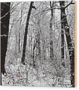 Freshly Fallen Snow Wood Print