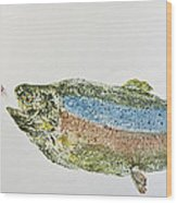 Freshwater Rainbow Trout With Fly Wood Print by Nancy Gorr
