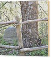 Friend Of Nature Wood Print