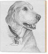 Friendly Dog Pencil Portrait  Wood Print