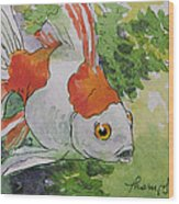 Friendly Fantail Tiny Goldfish Painting Wood Print