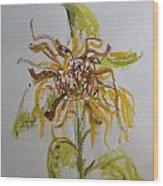 Friendly Sunflower Wood Print
