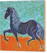 Friesian Horse Wood Print