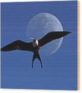Frigatebird Moon Wood Print