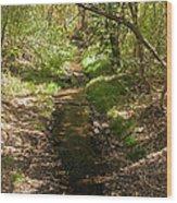 Frijole Creek Bandelier National Monument Wood Print
