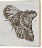 Frilled Lizard Wood Print