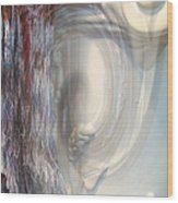 Fringe Element - Pastel Abstract Wood Print