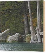 Frio River 2 Wood Print