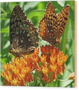 Fritillaries  Wood Print