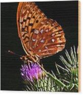 Fritillary On Thistle Wood Print