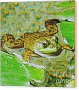 Frog  Abby Aldrich Rockefeller Garden Wood Print