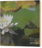 Frog And Water Lily Wood Print