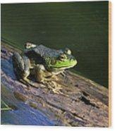 Frog On A Log Wood Print