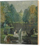Frog Pond In Boston Public Gardens Wood Print
