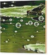 Frog Pond Space Galaxy Wood Print