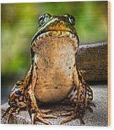 Frog Prince Or So He Thinks Wood Print