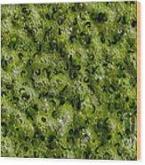 Frog Spawn Wood Print