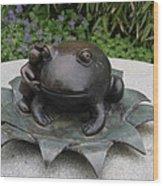 Frog Whisperer Wood Print