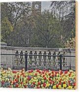 From Buckingham To Big Ben Wood Print