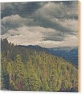 From Moro Rock Of The Sequoias Wood Print
