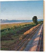 Train Through Illinois Wood Print