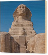 From The Feet Of The Sphinx Wood Print