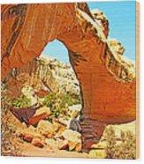 Front Of Hickman Bridge In Capitol Reef National Park-utah Wood Print