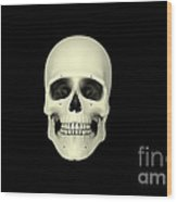 Front View Of Human Skull Wood Print