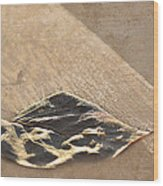 Frost Basking Wood Print