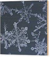 Frost Crystal On Glass Kodiak Isl Wood Print