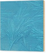 Frost Feathers Wood Print