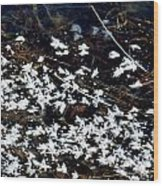 Frost Flakes On Ice - 10 Wood Print