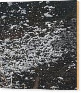 Frost Flakes On Ice - 30 Wood Print