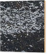 Frost Flakes On Ice - 33 Wood Print