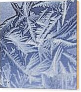 Frost In Blue Wood Print